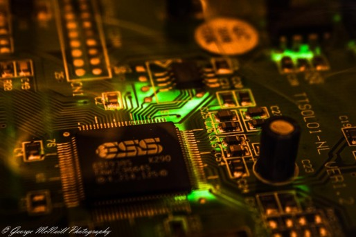 Circuit of life