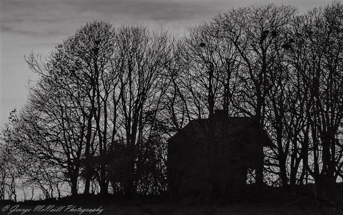 old house 1a.jpg