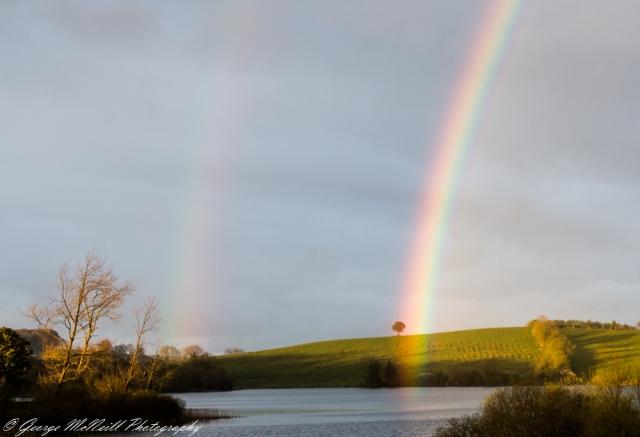 rainbow4.JPG