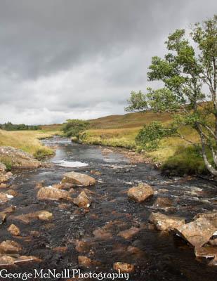 Scotland-108.jpg