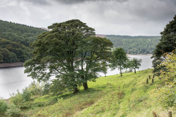 Scotland & Peak-4.jpg