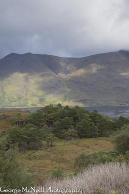 Scotland-133.jpg