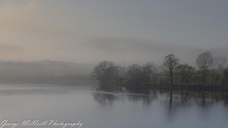 mist 01.2018-2195.jpg