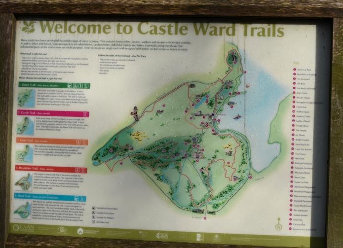 Castle Ward 2018-2230.jpg